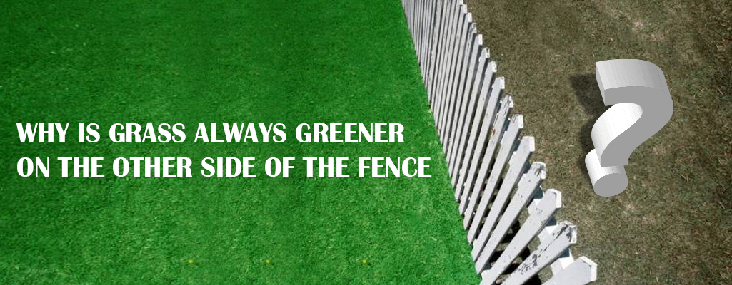 Why the grass is greener at the other side of the fence!