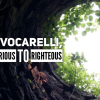 Vince Vocarelli, from notorious to Islam